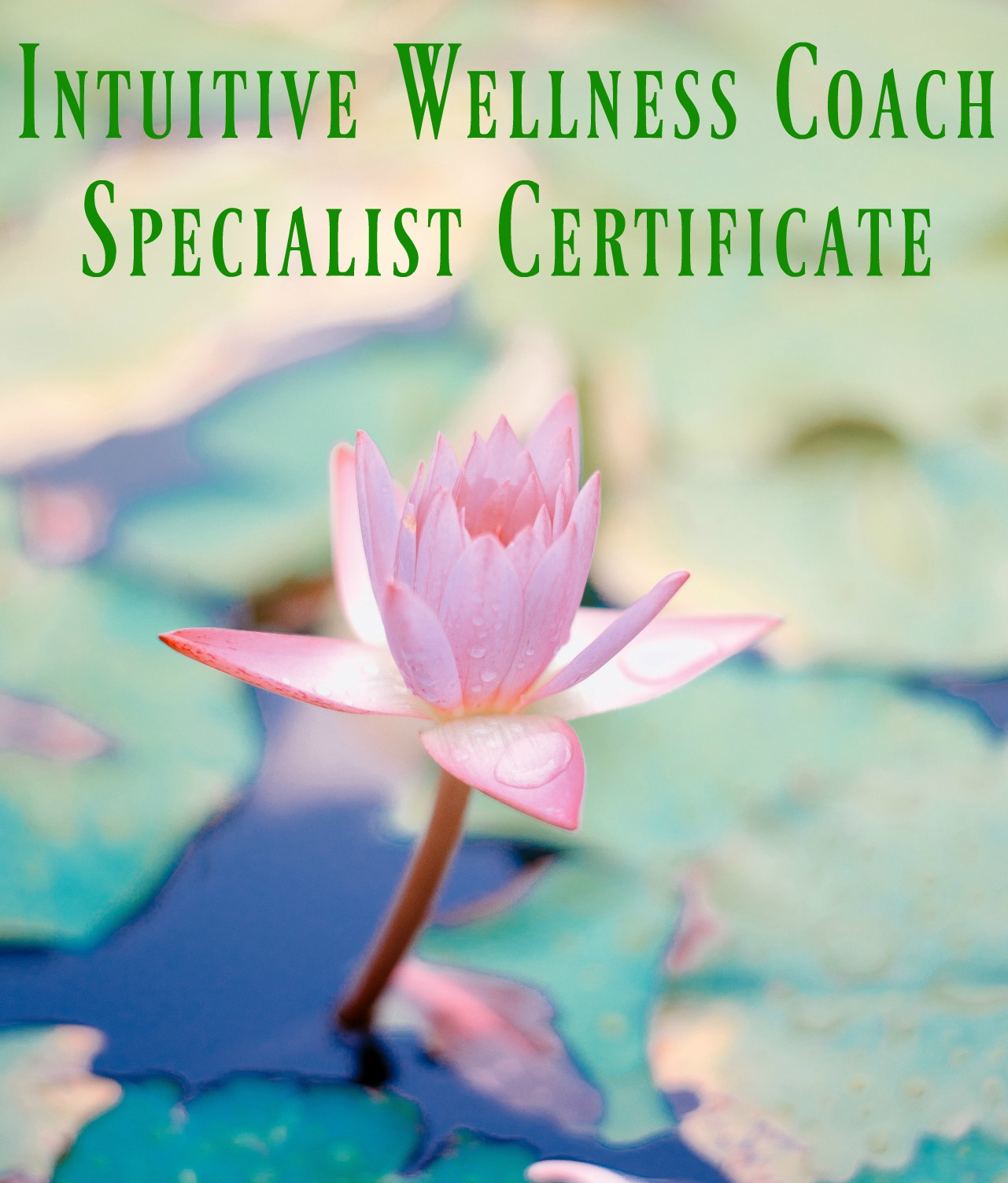 Enroll In The Intuitive Wellness Coach Course And Get Certified