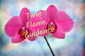 Twin Flame Guidance