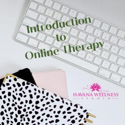 Introduction to Online Therapy