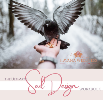 The Ultimate Soul Design Workbook